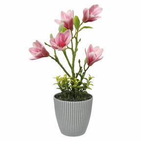 Magnolia kunst in bloempot 21 cm