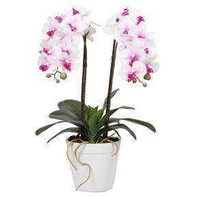 Orchidee kunst 43 cm