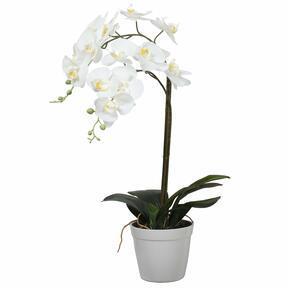Orchidee kunst wit 65 cm