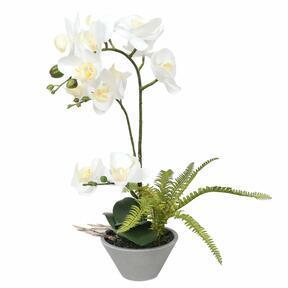 Orchidee kunst wit met varen 43 cm