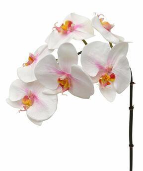 Orchidee kunsttak roze-wit 55 cm