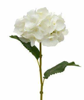 Kunsttak Hortensia crème 45 cm