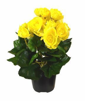 Kunstplant Begonia geel 25 cm