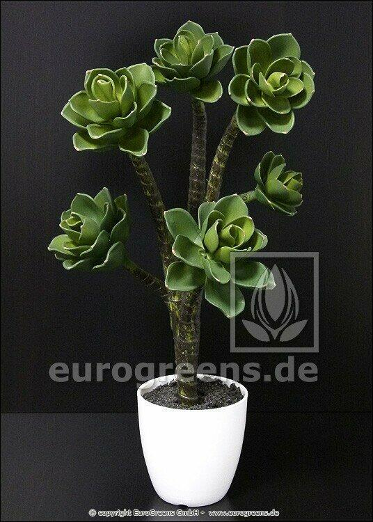 Kunstplant Eševéria 55 cm