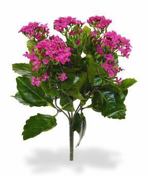 Kunstplant Kalanchoa roze 30 cm