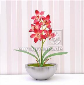 Kunstplant Orchidea Cymbidium bordeaux rood 50 cm