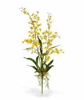 Kunstplant Orchidea Oncídium 80 cm