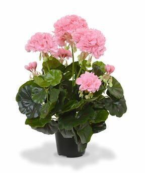 Kunstplant Pakost roze 40 cm